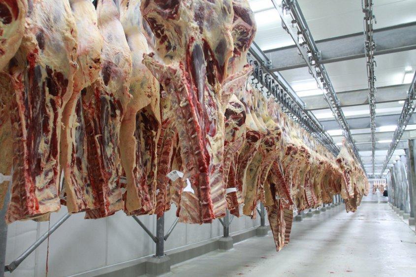 Crisis en China provocó caída del 10% en precio de carne exportada