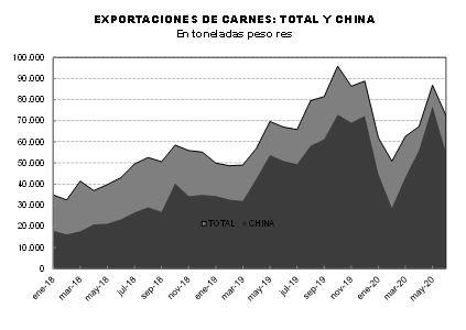 Informe exportaciones de carne