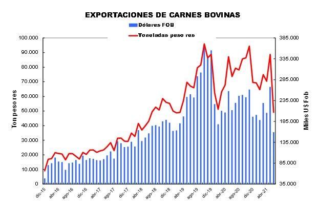En la primera mitad de 2021, las exportaciones de carnes bovinas sumaron 417 mil toneladas peso res