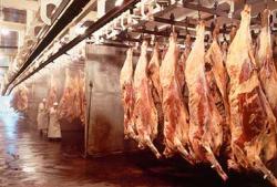 Australia registró un año récord en la exportación de carne de vacuno en 2014