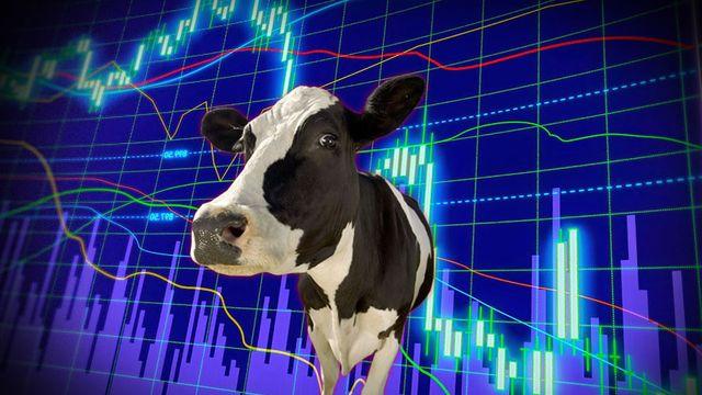 El Gobierno, preocupado por el precio de la carne vacuna, pide