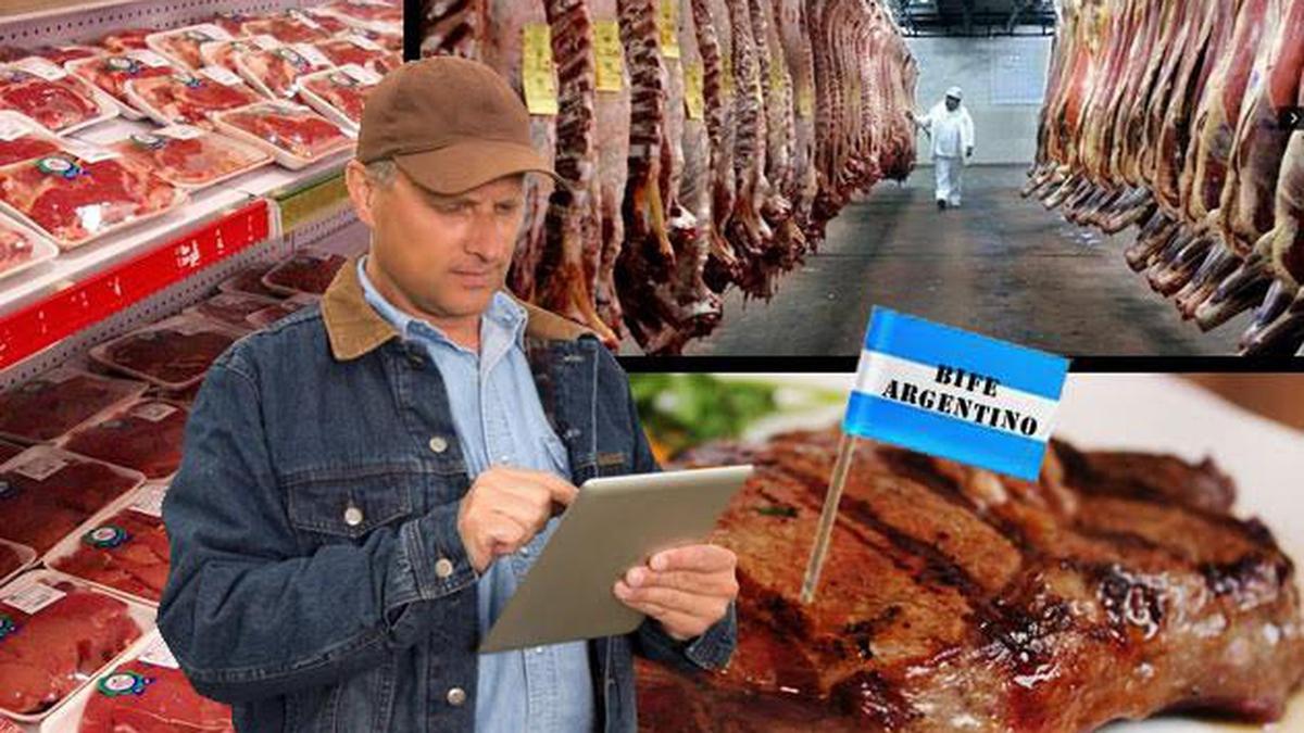 Creció la exportación de carne bovina argentina pero hubo una caída en la facturación