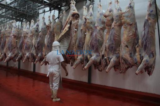 Paraguay: Récord de US$ 1.600 millones en exportación de carne