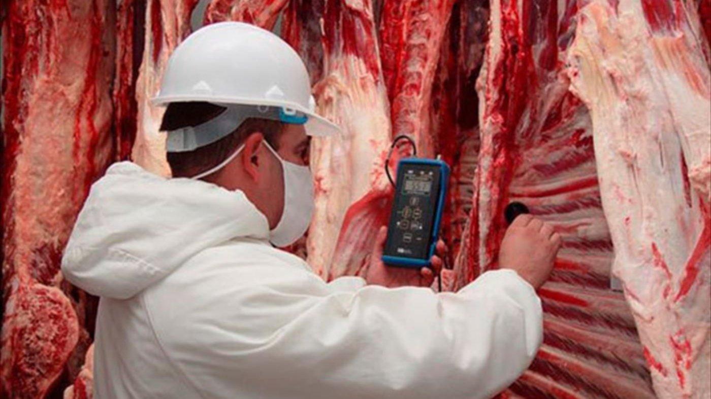 Exportaciones de carne a China complicadas por la falta de contenedores