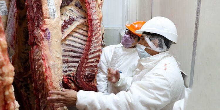 Sin gran demanda interna y con las exportaciones limitadas, las cámaras frigoríficas comienzan a abarrotarse de carne