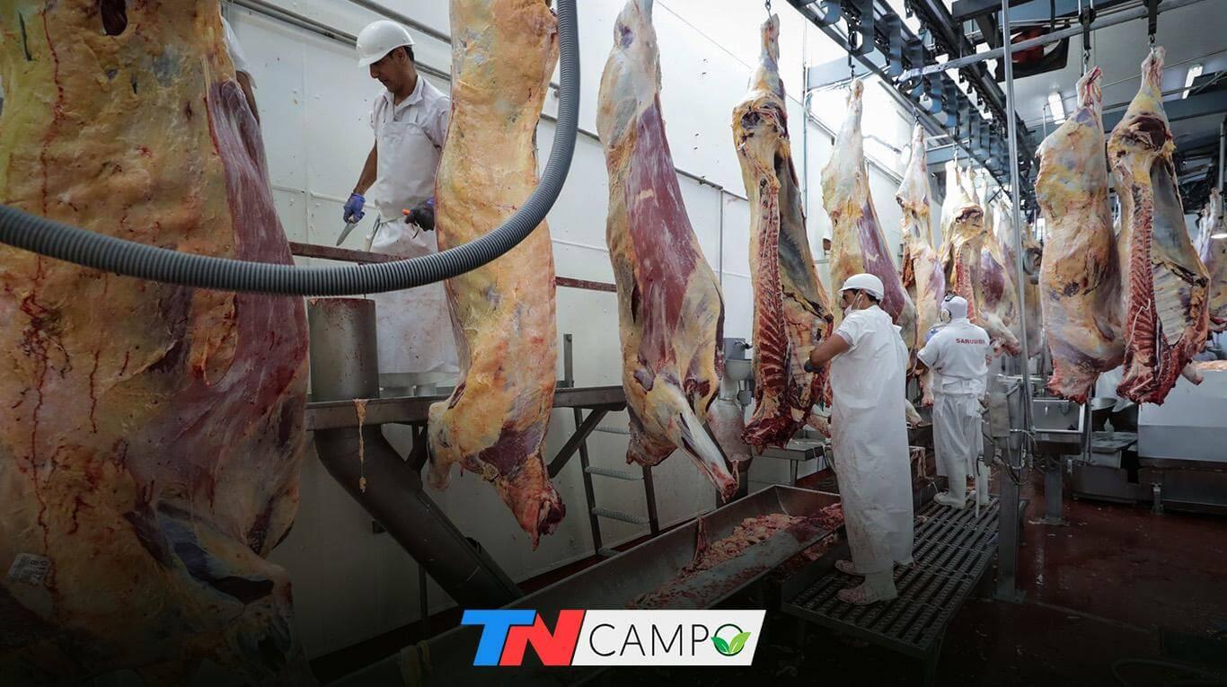 Coronavirus: se recuperan las exportaciones de carne a China