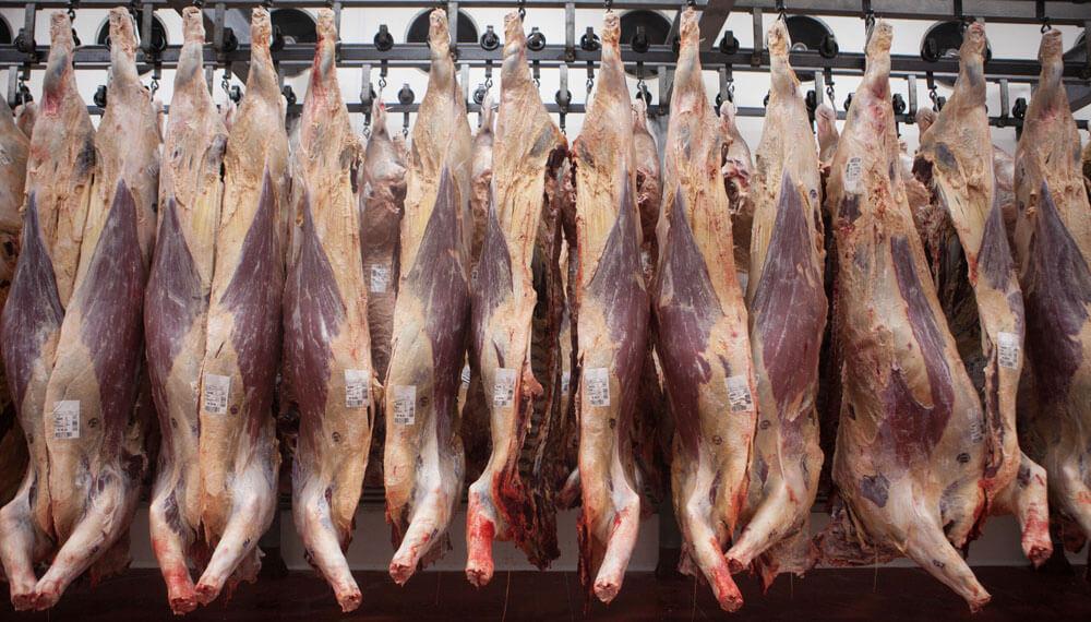 Quiénes fueron los ganadores y perdedores de la cadena de la carne en 2019