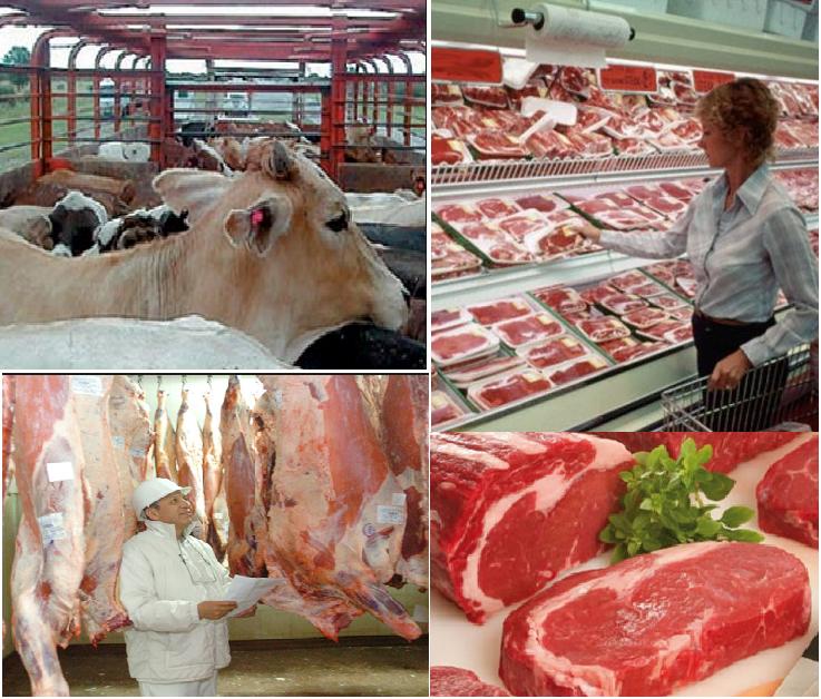 En Chile cuales son los temas pendientes que traban la cadena de la carne