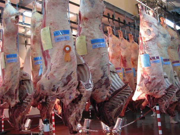 Carne: por ahora, Rusia, China y los EE.UU. están lejos del radar