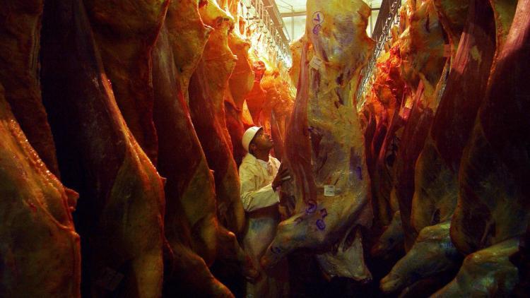 Para el Usda, los envíos de carne argentina crecerán 11% en 2020