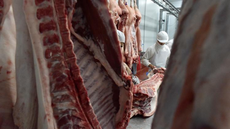 Brasil y Argentina, llamados a ser los grandes proveedores de carne