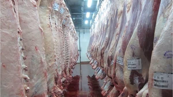 Advierten los exportadores sobre el cierre de frigoríficos