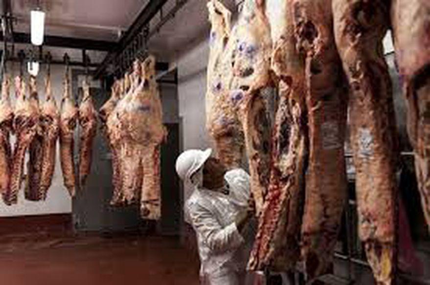 Carne: el Gobierno reimpone un registro para controlar la exportación