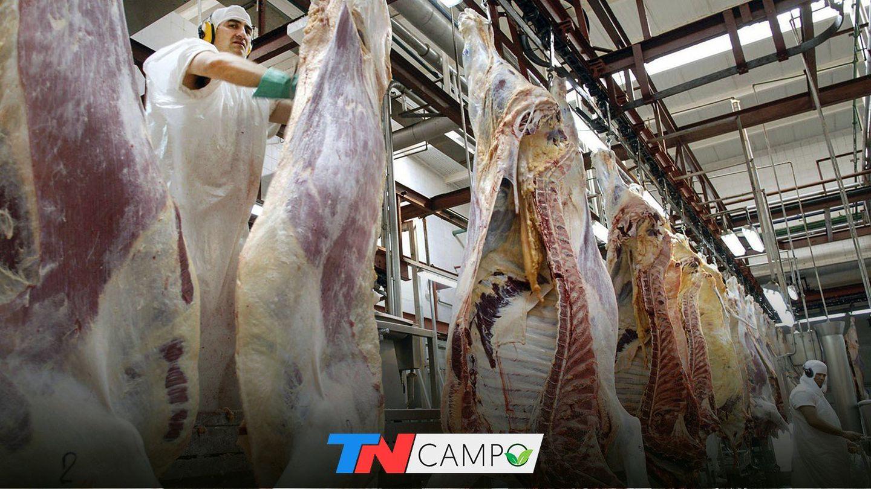 Carne: las exportaciones crecieron, pero siguen condicionadas por la pandemia