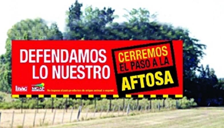 Carne: auditores japoneses destacaron las barreras sanitarias de Uruguay