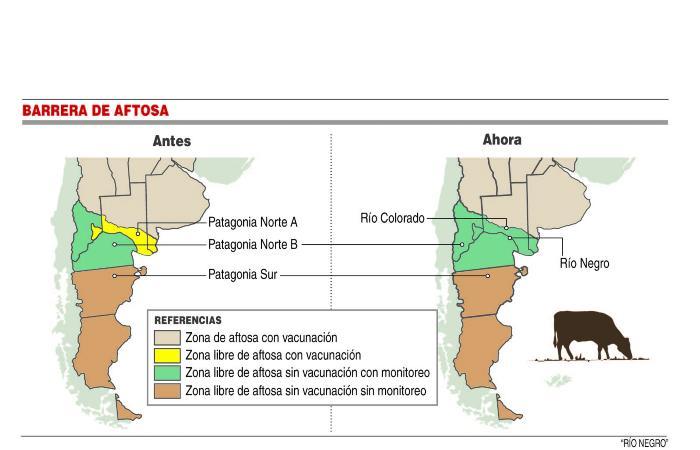 Críticas por medidas para transportar ganado en la Patagonia