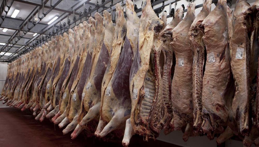 Con exportadores argentinos en Shanghái, China habilitó más frigoríficos locales para exportar carne vacuna