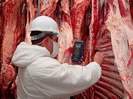Carnes: suspenden embarques a China
