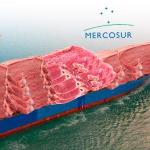 Mercosur con altibajos retoma las exportaciones de carne vacuna a Asia y la UE