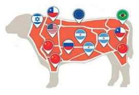 Cuál fue el efecto multiplicador de la exportación de carnes bovinas en otras actividades