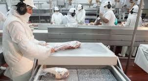 Exportación de carne: nuevos criterios para la cuota Hilton y la industria pide quita de retenciones