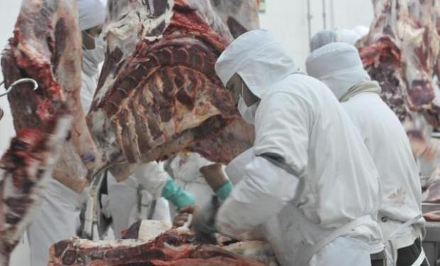 Mejores indicadores para el mercado de la carne