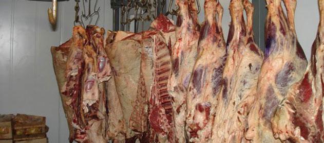 Las exportaciones de carne vacuna crecieron un 36% en el primer cuatrimestre