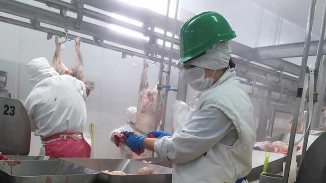 El sector requiere que se revea el cierre de exportaciones de carne y que se atiendan temas pendientes